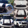 Dual Racing Stripes